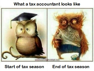 Tax Accountant before and after tax Season